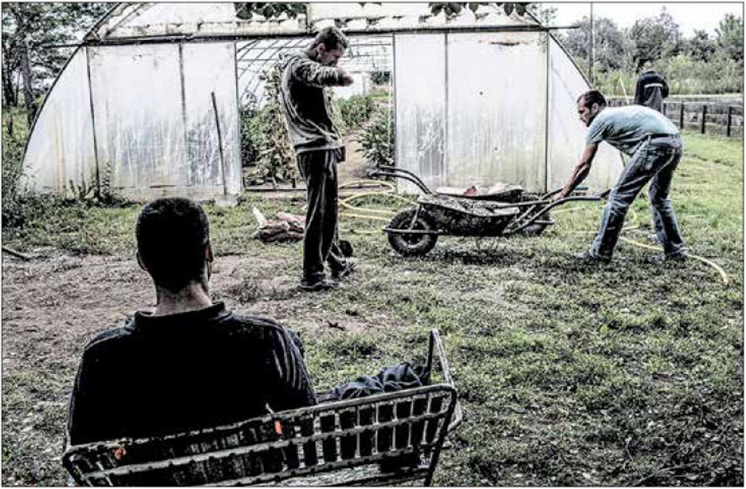 A felépüléshez a kerti munka és a jó levegő is hozzájárulhat