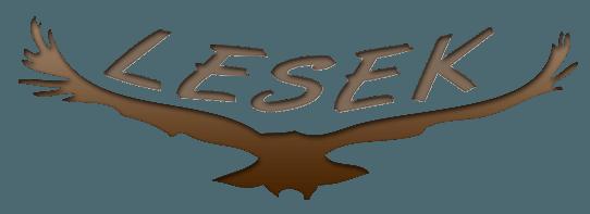 Látássérültek Segédeszköz Konferenciája (LESEK.)